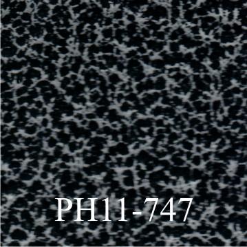 PH11-747